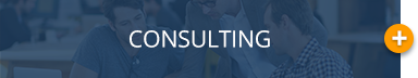 Banner_consulting